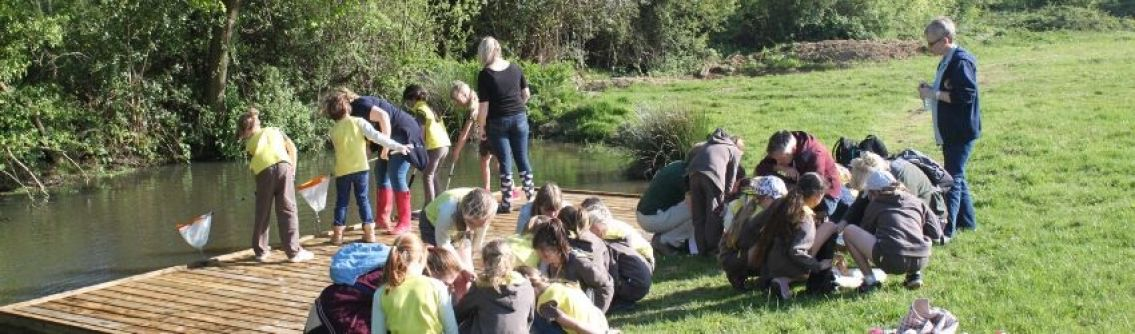 A group of brownies at Chesworth Farm
