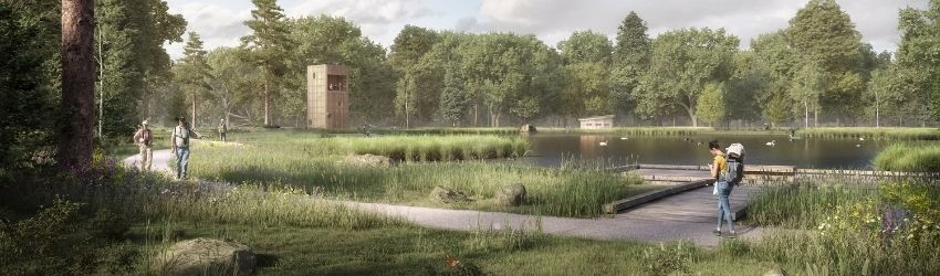 A concept image of Rookwood Horsham. This image is for illustrative purposes only and shows local wildflowers and butterflies, open paths next to a lake and a lookout for birdwatchers