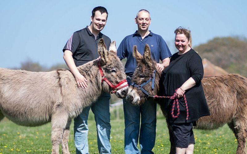 East Clayton Farm Donkey Walk people standing next to donkeys
