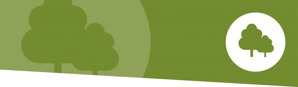 A green graphic banner with a tree to indicate the environment