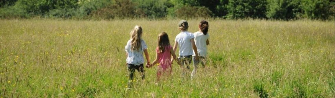 Children walking through the meadow at Chesworth Farm